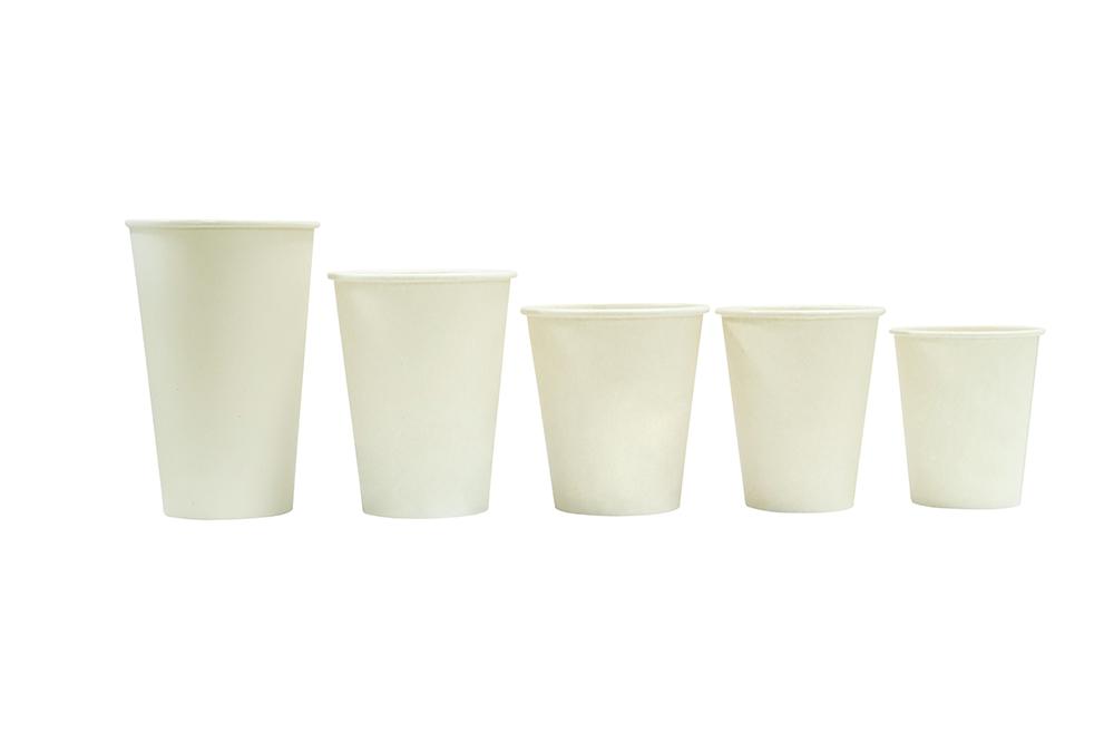 PLA-本色蔗渣单层杯